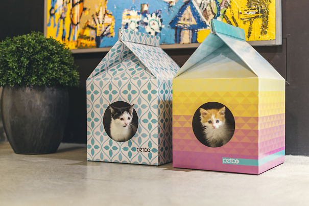 Eco-friendly Playhouse For Cats