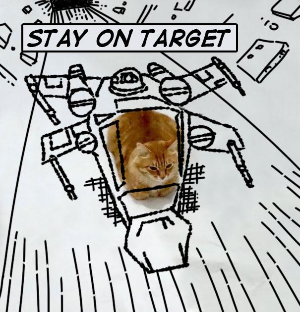A Meow Hope