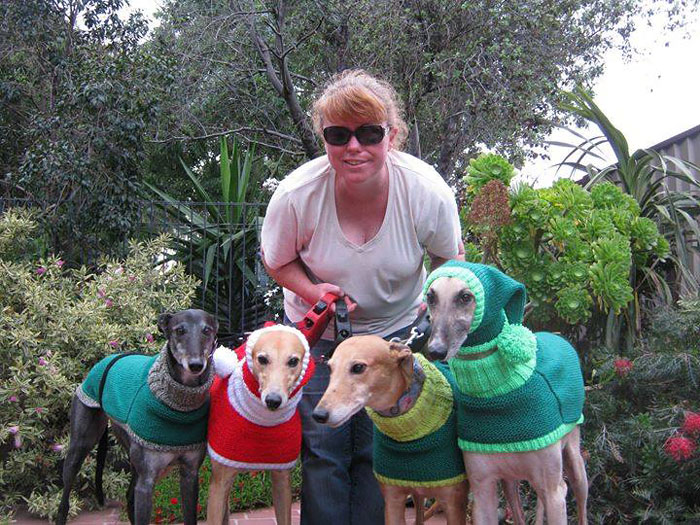abandoned-greyhounds-christmas-sweaters-knitted-with-love-jan-brown-3