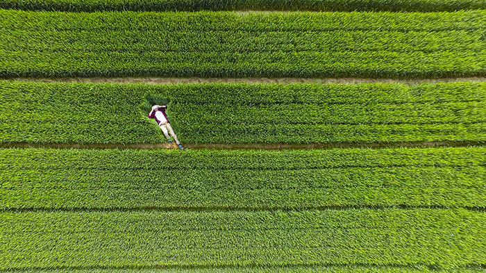 10+ Of The Best Drone Photos Shot In 2015