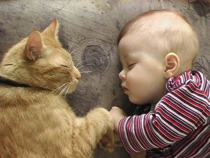 Baby Sleeping With Cat