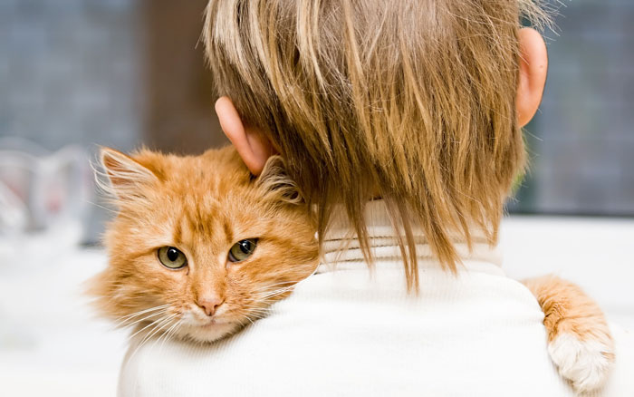 Boy Hugs His Cat