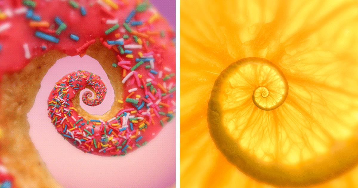 Hypnotizing GIFs Of Everyday Objects By Polish Artist
