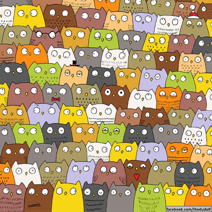 Find The Cat Forget The Panda