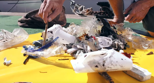 floating-rubbish-bin-ocean-cleaning-seabin-andrew-turton-pete-ceglinski-australia-4