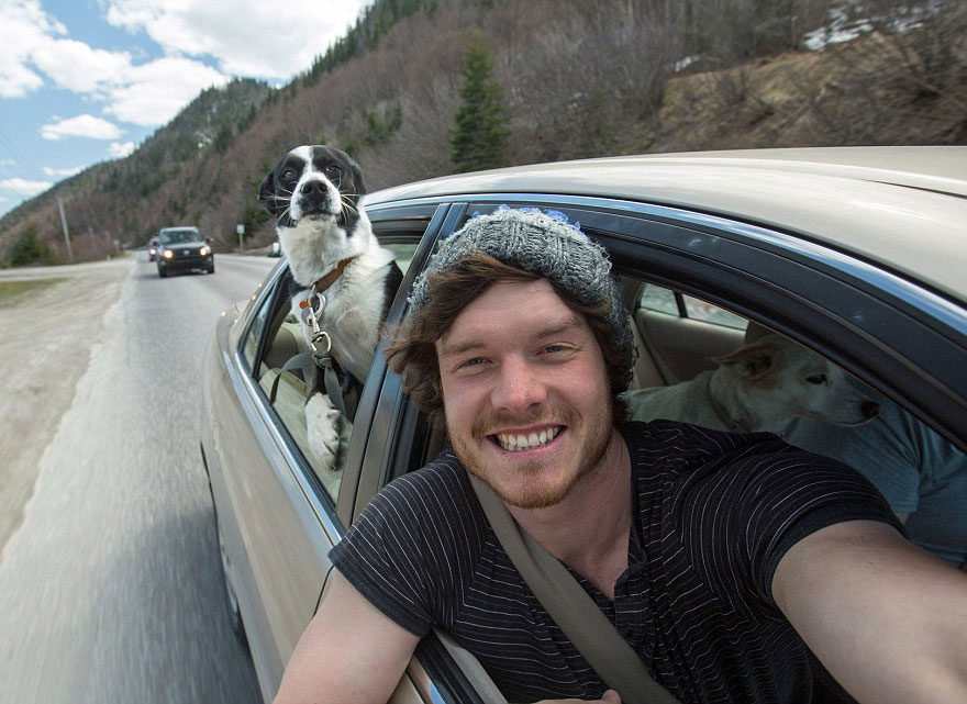 funny-animal-selfies-allan-dixon-23