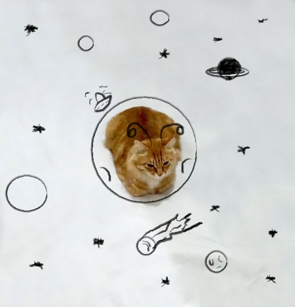 Kitty In Space