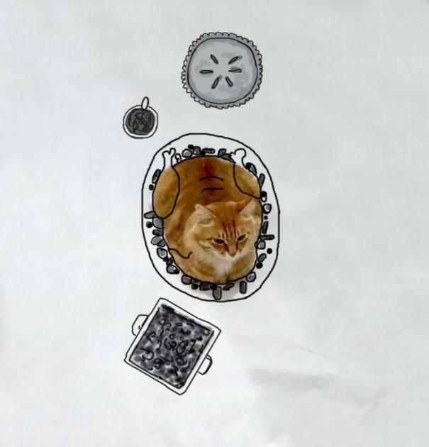 Butterball Cat