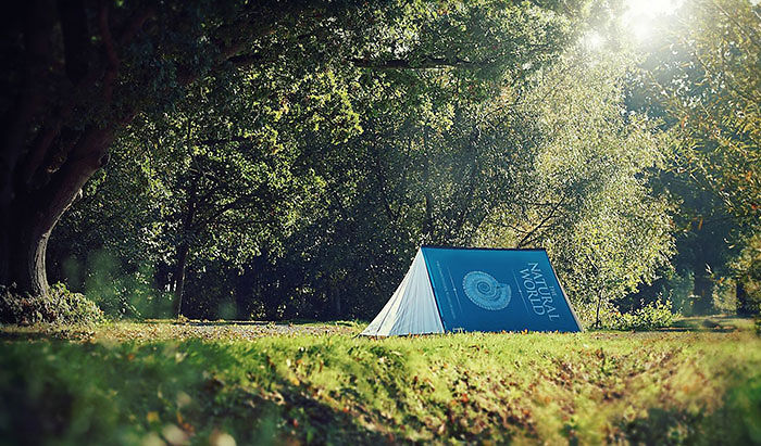 Fully Booked 2-Person Tent