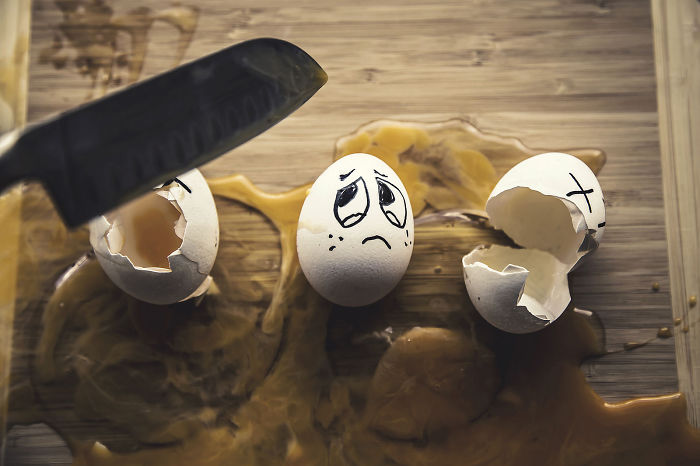 How Simple Eggs Transform Into Funny Photos