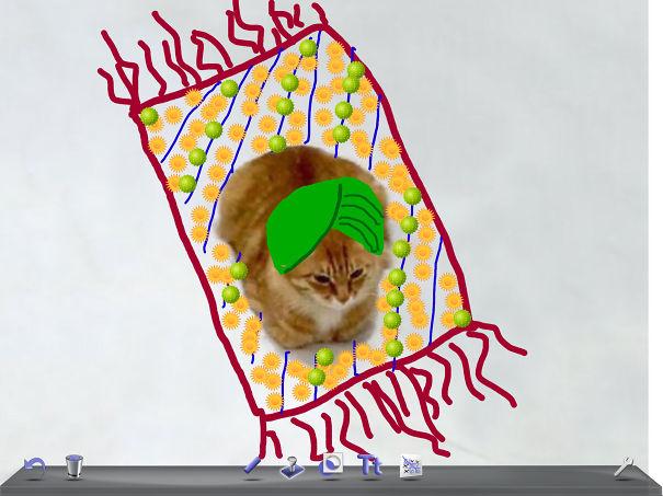 Flying Karpet Kitty