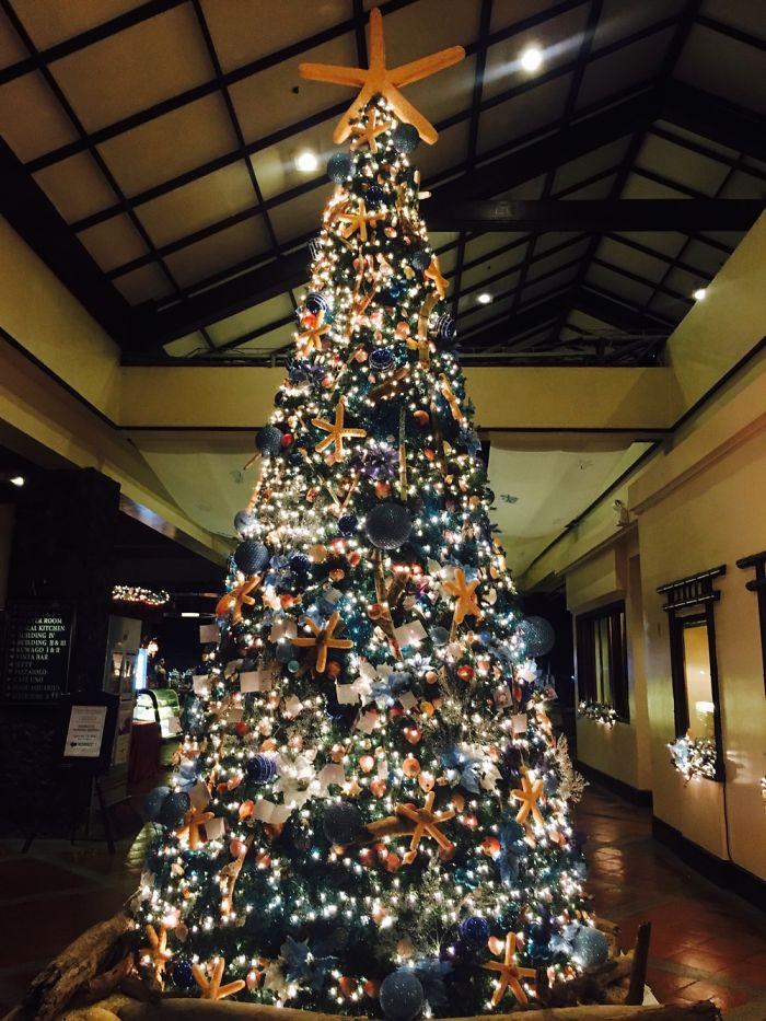 Marine Biologists' Christmas Tree