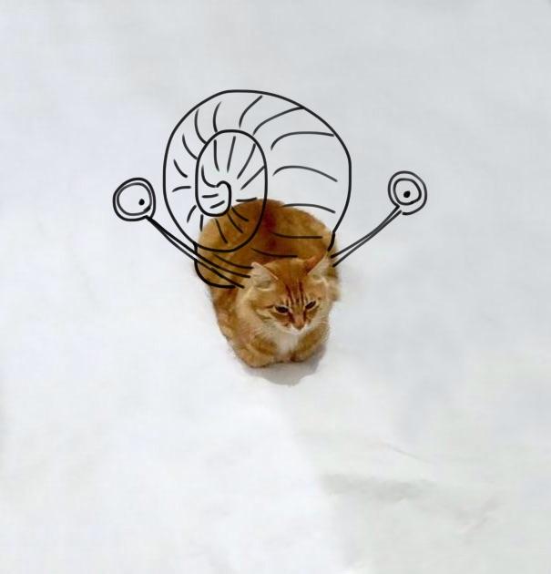 I Am A Snail