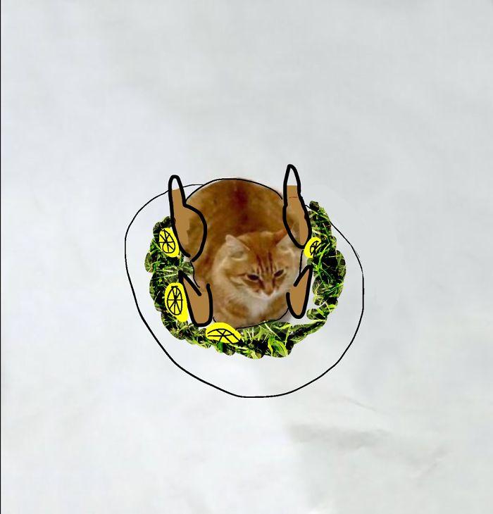 #25 Turkey Cat