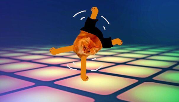 Break Dancing Kitty!