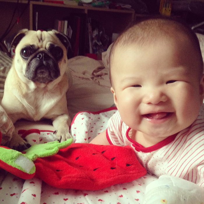 Smiling Baby With His Pug