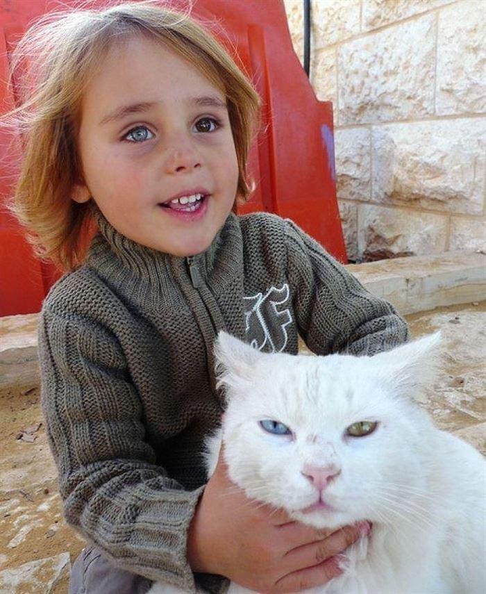 This Israeli Boy And His Cat Both Have Heterochromic Eyes!