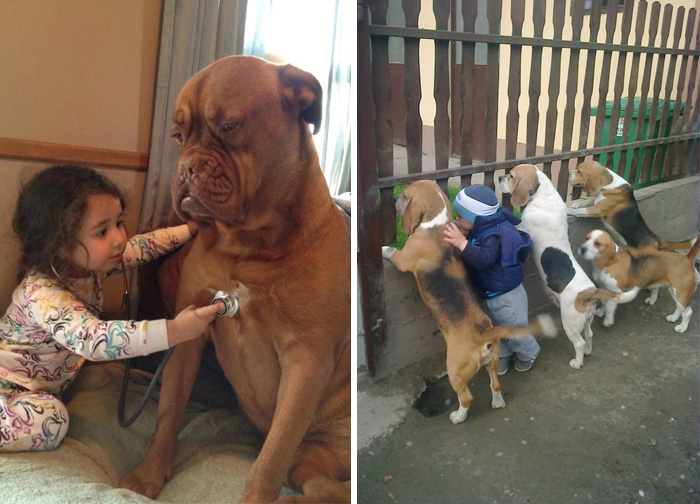 20+ Heartwarming Photos Proving That Your Kids Need A Pet