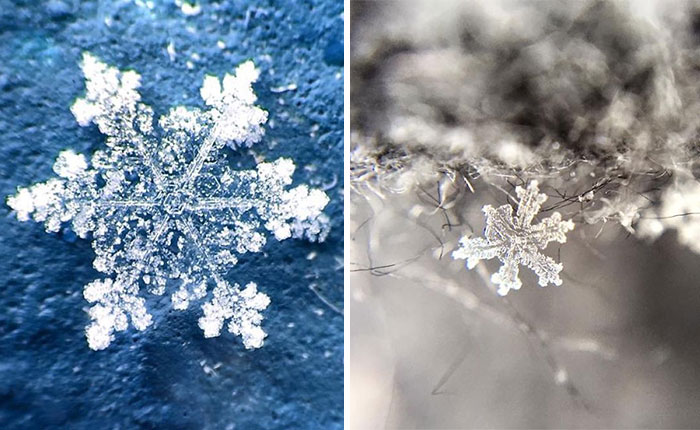 Magic Of Snow: I Try To Capture A Perfect Snowflake