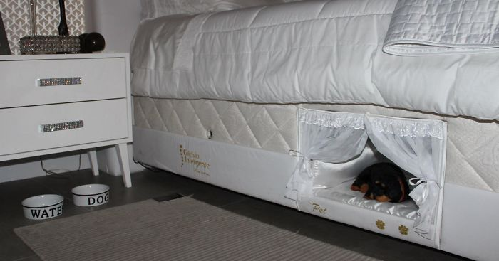 This Bed Has A Tiny Compartment For Your Pet So That You