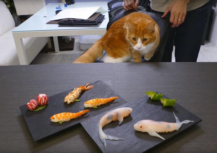 real-life-swimming-koi-sushi-4