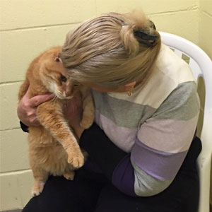 Woman Adopts Senior Cat, Later Comes Back To Shelter For His 16-Year-Old Best Friend