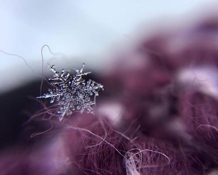 snowflakes-3__880