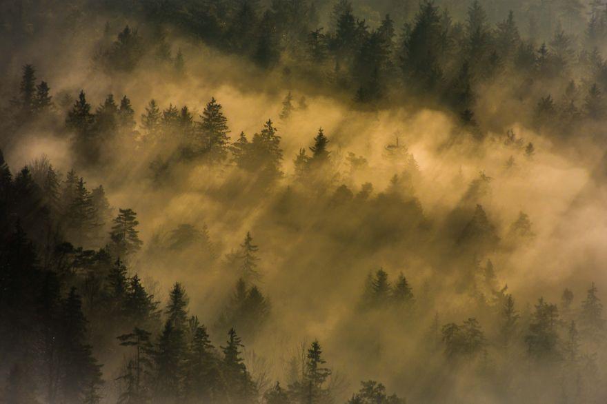 Фотогалерея: красота словенского рассвета