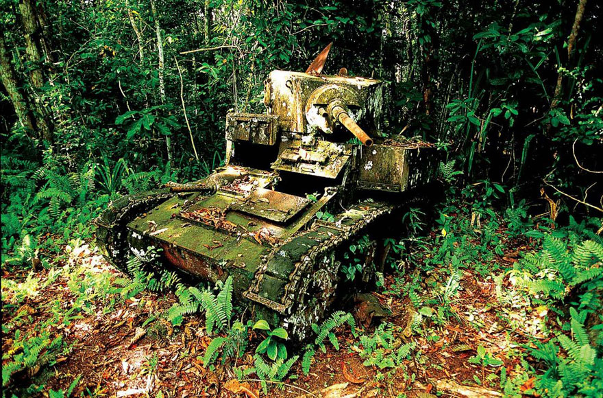 Tank Taken Over By Nature