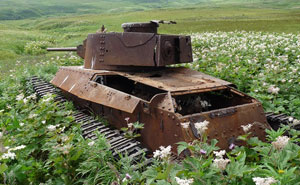 Tanks Swallowed By Nature Look So Peaceful As If The War Never Happened (10+ Pics)