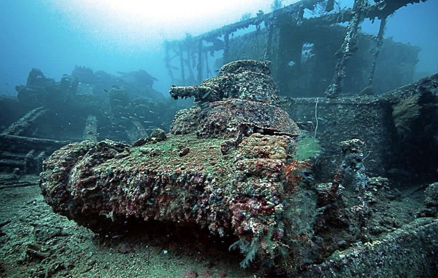 Tank Swallowed By Corals
