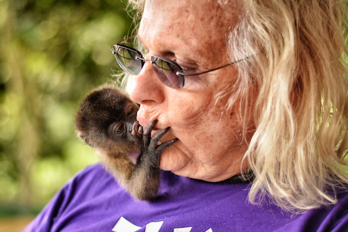 This Baby Monkey Taught Me A Lesson About The Purity We Don't See In Humans