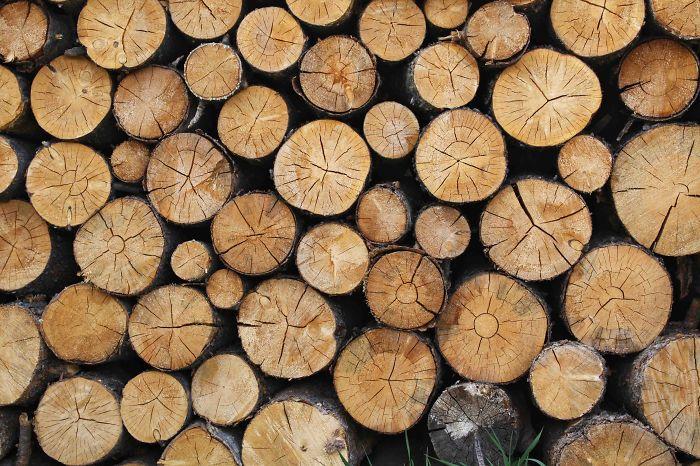 Timber Framing In Australia