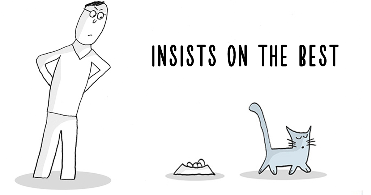 21 Life Lessons From Cats