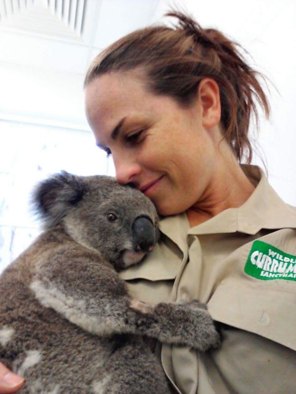 I Work As A Vet Nurse In A Wildlife Hospital