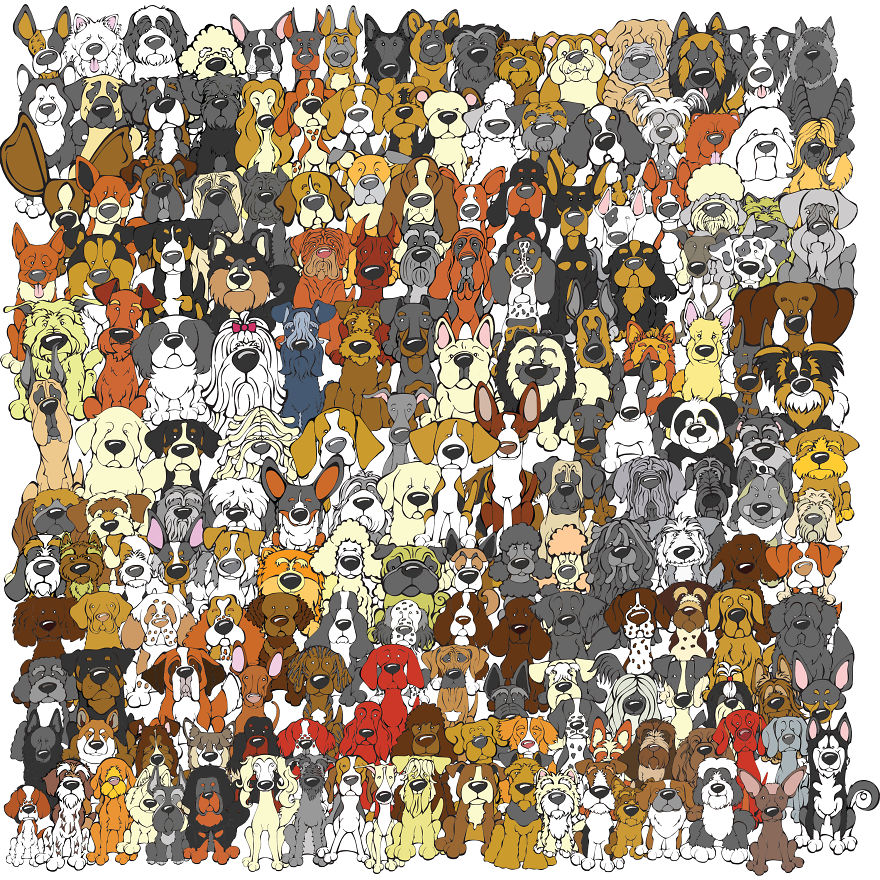 Find The Panda: Dog Edition