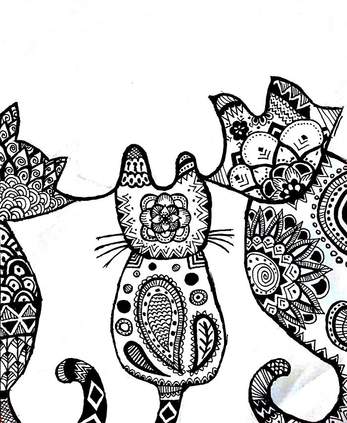 Cats In Black And White…