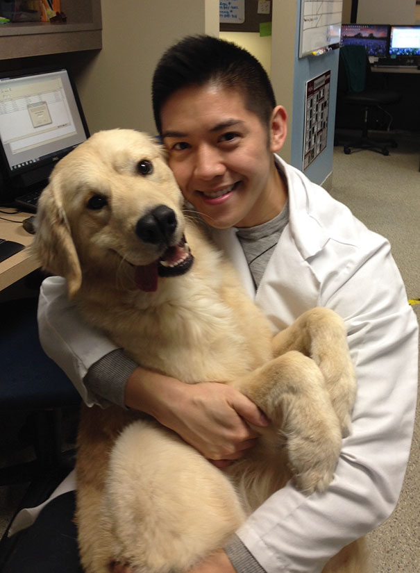 My Brothers Dog Seems To Really Like His Vet Who Saved His Life As A Puppy