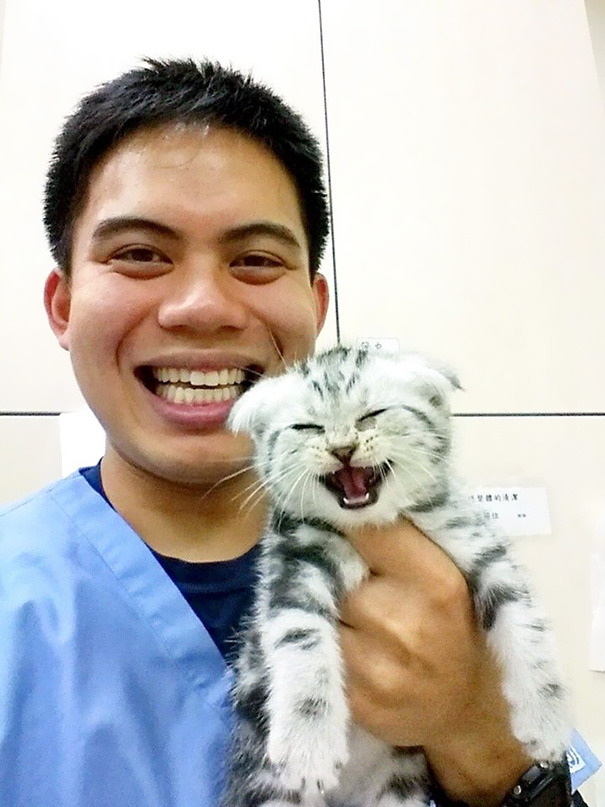 My Friend Posted A Photo Of A Cat He Took Care Of While On His Vet Internship In Taiwan