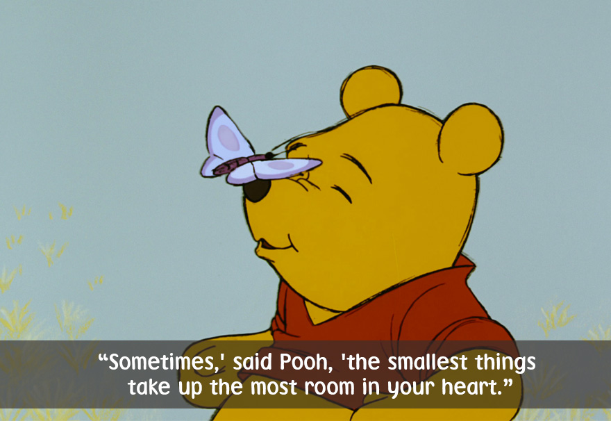 Best Pooh Quotes Celebrate Winnie The Pooh's Day With 25 Of His Best Quotes | Bored  Best Pooh Quotes