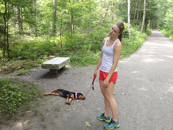 Take Your Puppy For A Walk They Said... It Will Be Fun They Said