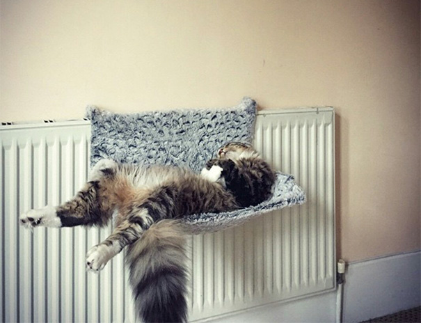 This Is Where He Sleeps
