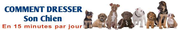 Dressage chien comment dresser son chien guide complet pour duquer son chi - Cuisiner pour son chien ...