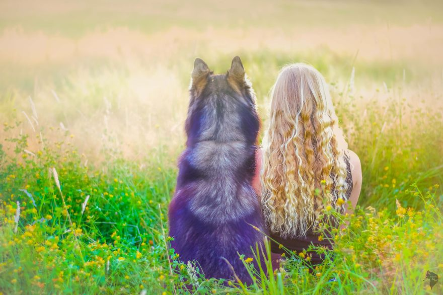 I Rescued A Husky And Later He Saved Me From An Abusive Relationship