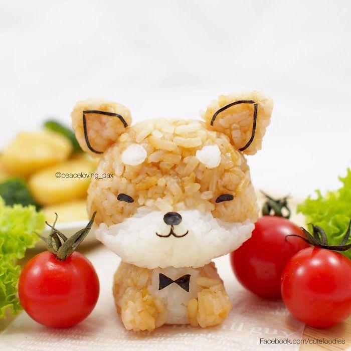 Shiba-Inu Dog