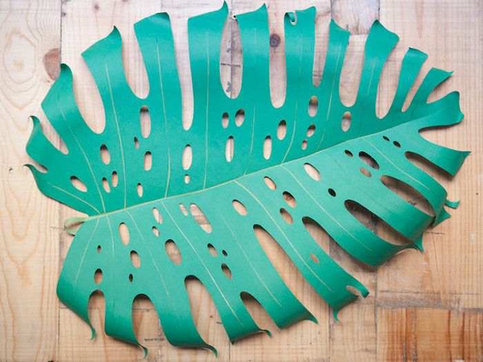 I Create Large Hand Cut Tropical Paper Leaves