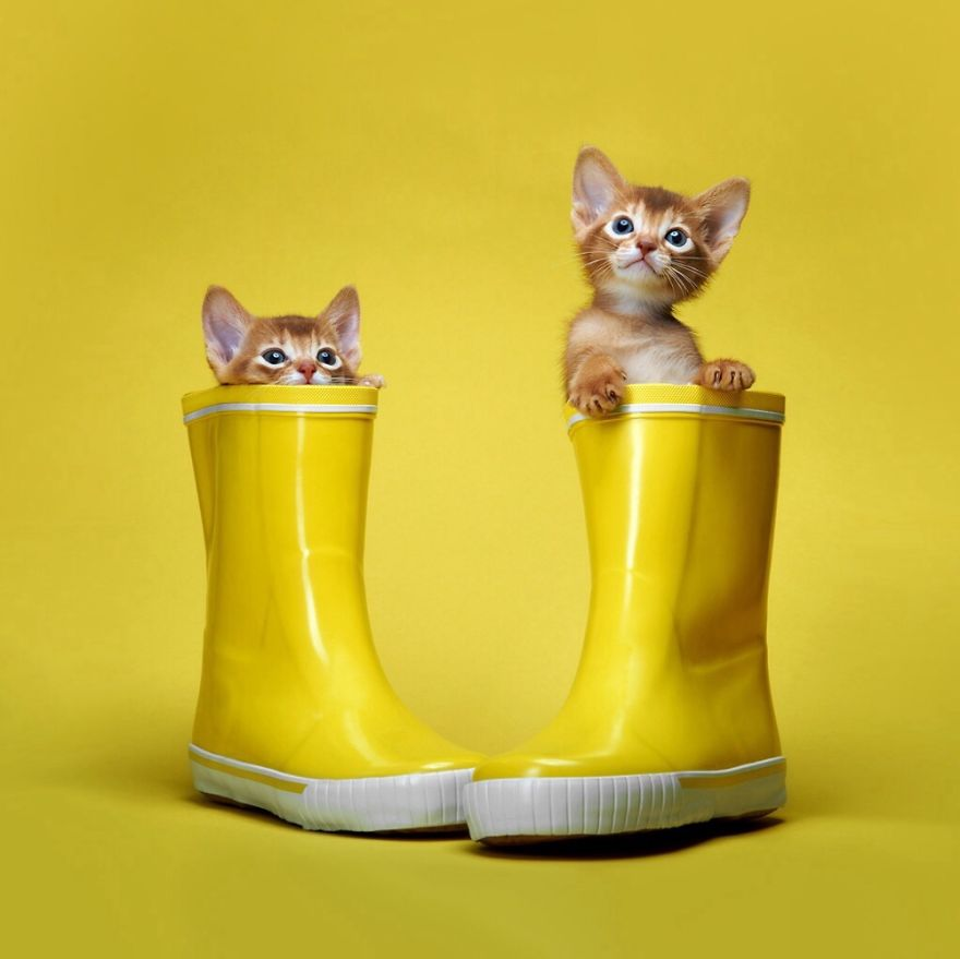 These Are Our Boots Now