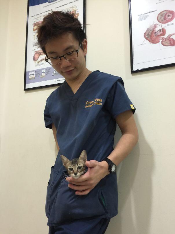 Little Kitten In My Pocket :)