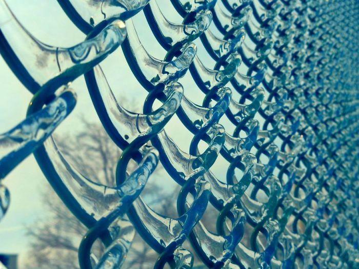 Frozen Welded Wire Fence