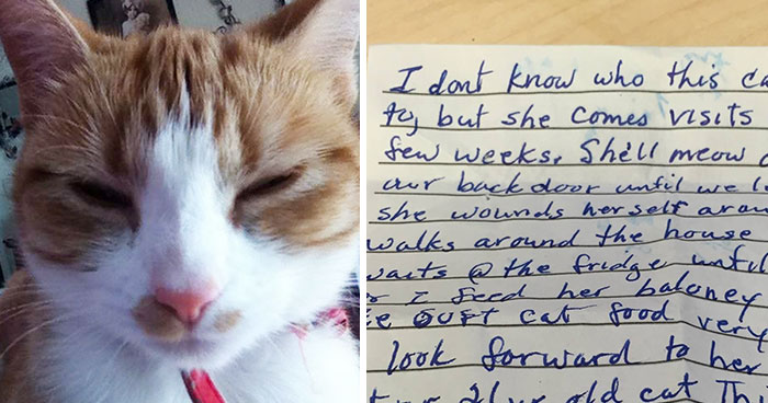 Cat Returns Home With A Note Revealing She Has A Secret Family